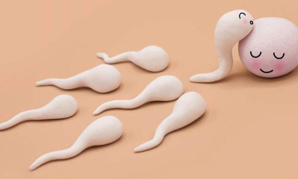 Going off medication can restore sperm production in transgender women