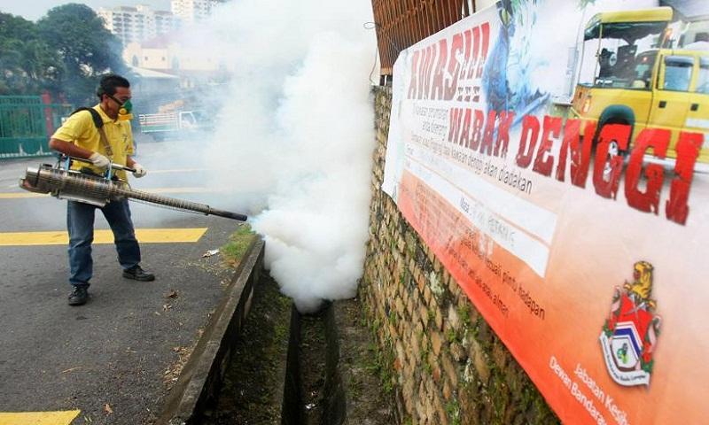 113 die of dengue in Malaysia