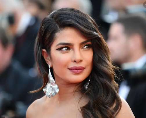 Pak minister wants Priyanka removed as UN Goodwill ambassador