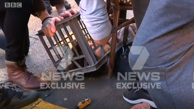 Sydney stabbing: Dramatic video shows suspect's arrest
