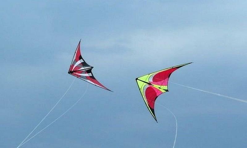 Delhi man on bike dies after Chinese kite string slits his throat