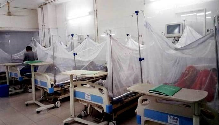 1,460 new dengue patients hospitalised in last 24 hrs