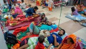 Death toll on rise despite fall in new dengue cases