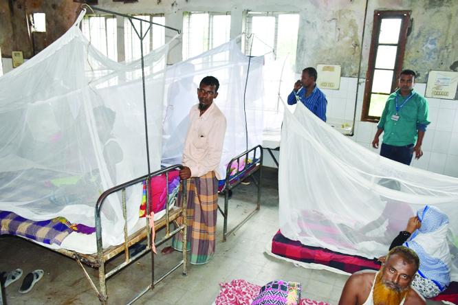 Most dengue patients return home, safely