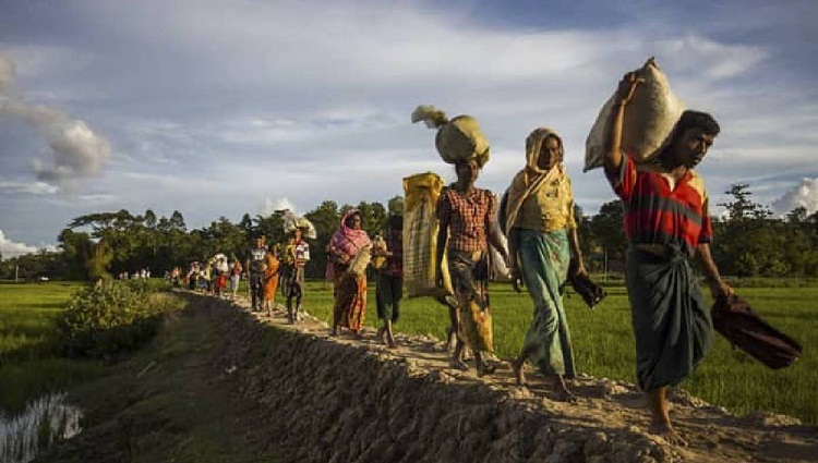 """Norway for expediting global efforts to ensure """"voluntary, safe"""" Rohingya repatriation"""
