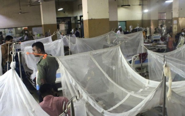 4 more die of dengue in 3 districts