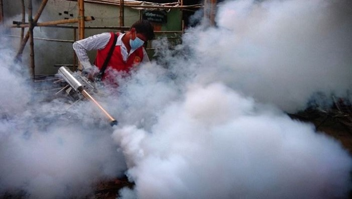 DNCC to launch combing operation to kill mosquitoes Tuesday