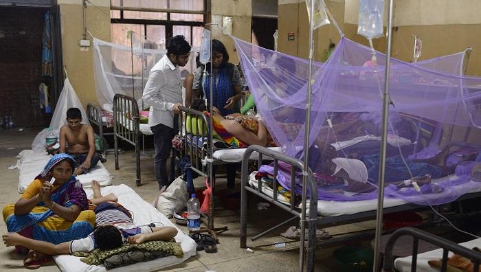 Fresh dengue cases mark slight fall, two more die