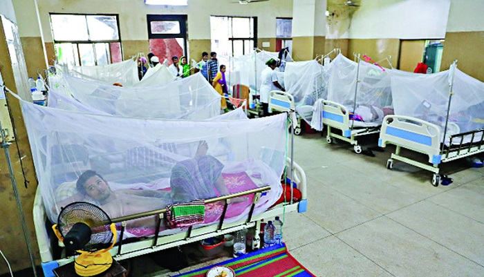 1,572 new dengue patients hospitalised in last 24 hours