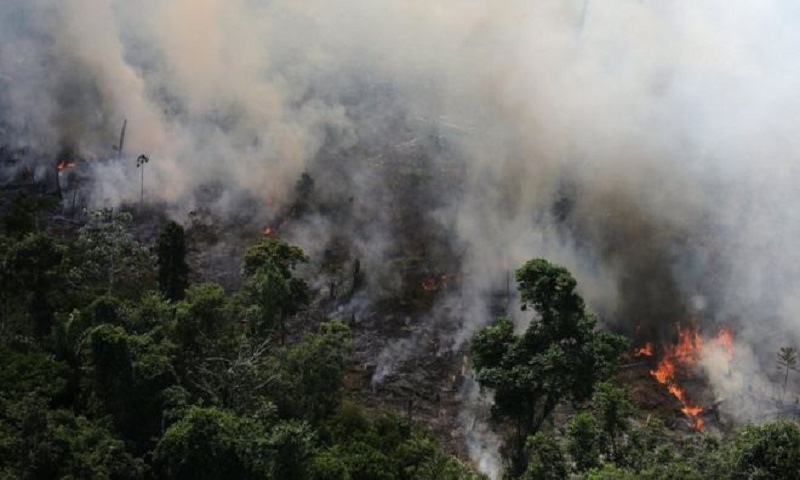 Amazon fires: Brazilian rainforest burning at record rate, space agency warns