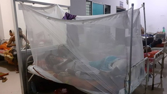 2 more dengue patients die in  Dhaka, Barishal