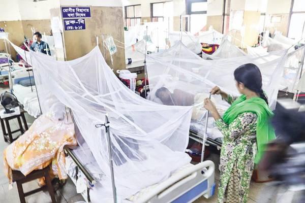 Housewife dies of dengue in Satkhira