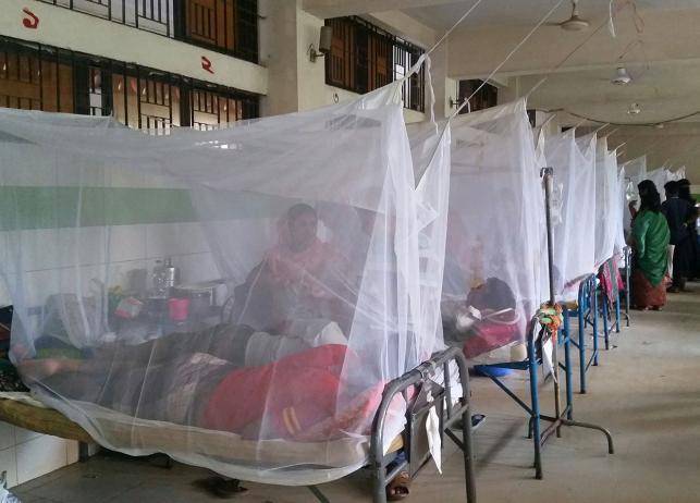 Housewife, madrasa boy die of dengue in Satkhira (Update-1)