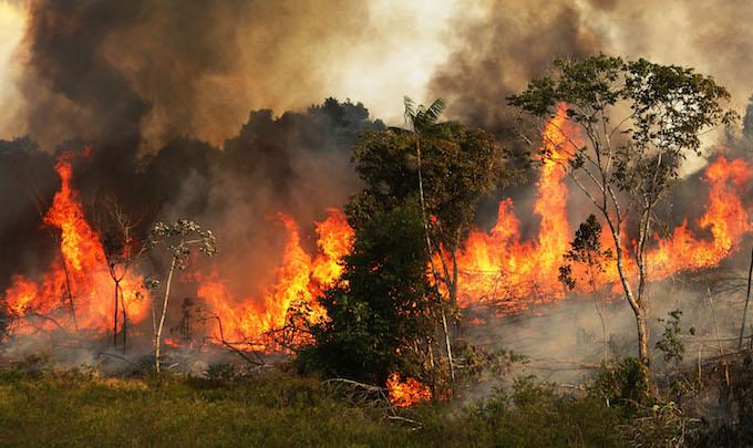 UN, France raise concern over Amazon wildfires 'crisis'