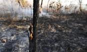 France's Macron, soccer stars unite against Amazon fires