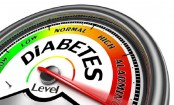 Glucose not responsible for inflammation in type 2 diabetes, suggests study