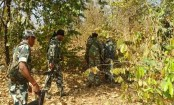 5 Maoists killed in encounter in India's Chhattisgarh