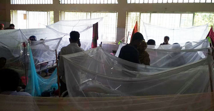 18 new dengue patients admitted to Cumilla hospitals in 24 hours