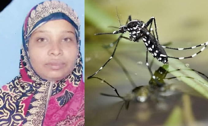 Dengue claims one more life in Madaripur