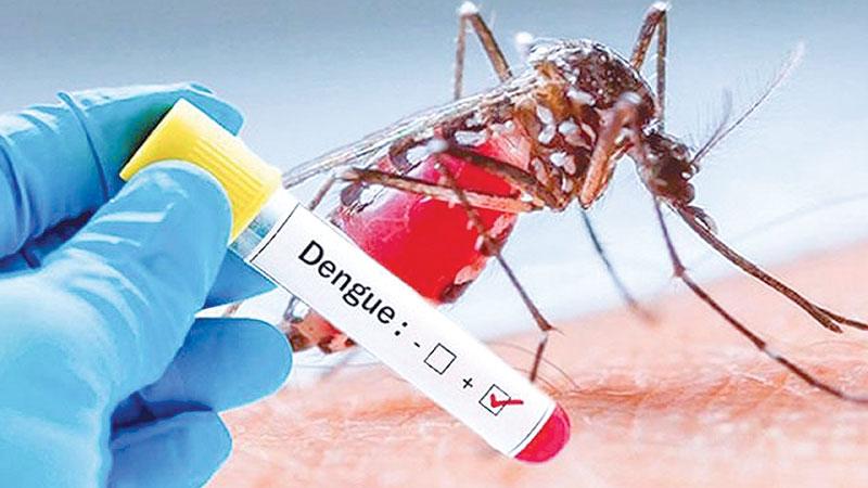 Gopalganj man succumbs to dengue at DMCH