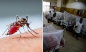 Travails of Dengue Outbreak