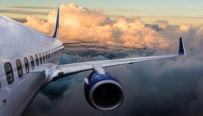 4 killed in plane crash in Ecuador's Amazon region