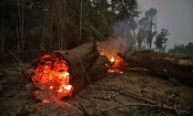 Amazon fires: Angola and DR Congo 'have more blazes'