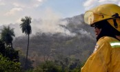 US ready to fight Amazon fires only in cooperation with Brazil