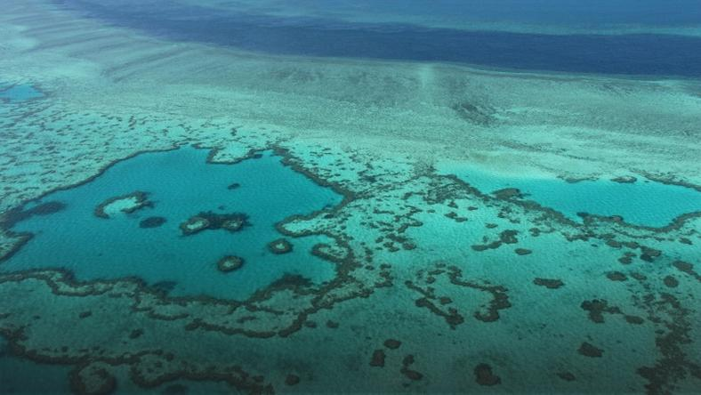 Great Barrier Reef outlook very poor, Australia says