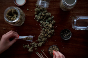 Cannabis decreases creativity and attention span