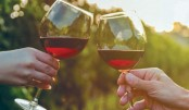 Why red wine could be good for your gut