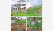 Shaheed Chandu, the dying ground in Bogura