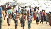 Rohingya bodies working against repatriation