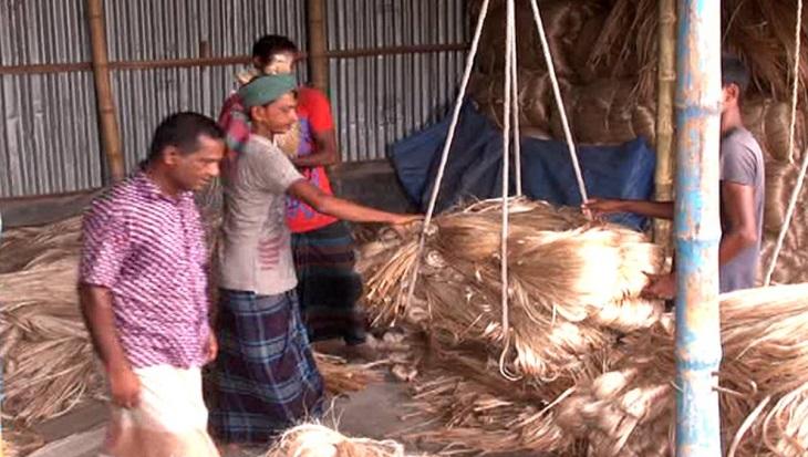 Low jute price frustrates Faridpur farmers