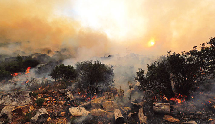 Have The Fires In The Amazon Really Been Contained?