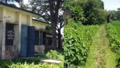Daulatpur health centre beset with manifold problems