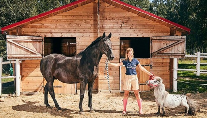 Meet world's smallest horse with