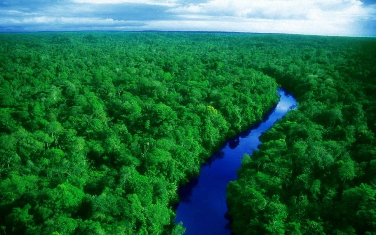 Amazon countries meet to bolster rainforest protection