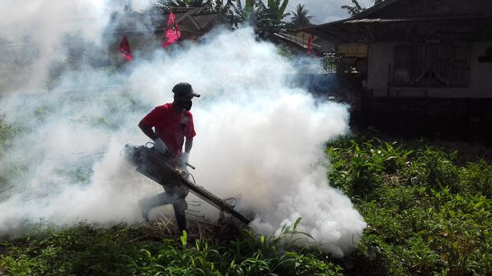 634 new dengue patients hospitalised in 24 hours