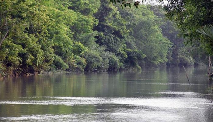 14 fishermen abducted for ransom in Sundarbans