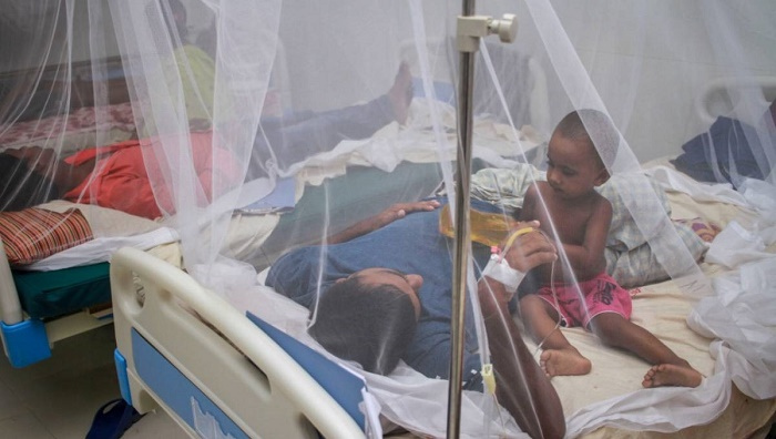 750 new dengue patients hospitalised in 24 hours