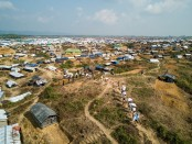 BGB detains 16 Rohingya people while going to Malaysia