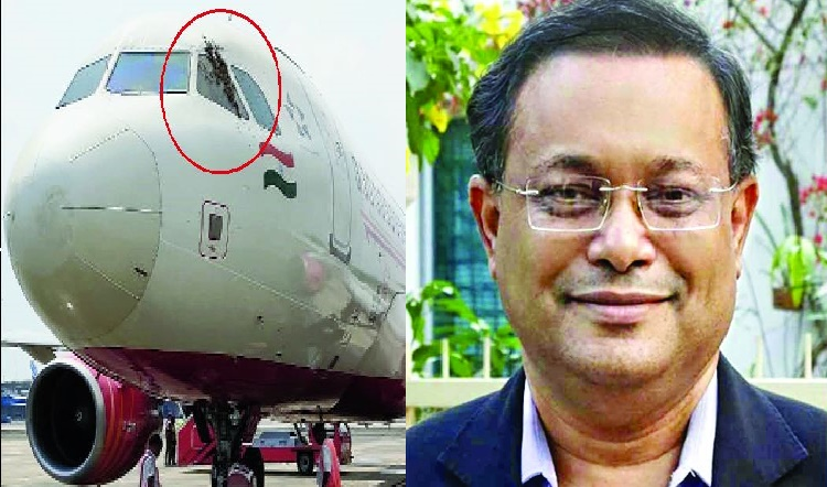 Air India flight carrying Bangladesh minister delayed as bees found clinging to plane