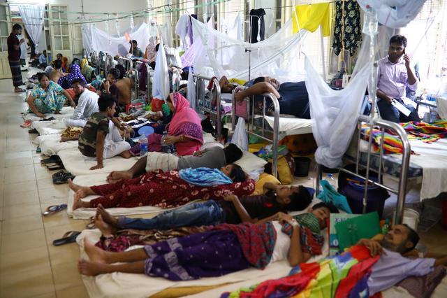 Dengue outbreak: Government confirms 68 deaths