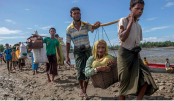 Govt urged to carry fair probe into deaths in Rohingya camps