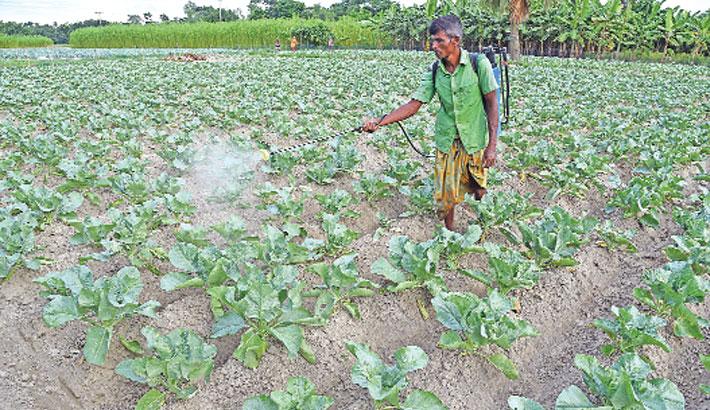 A farmer sprays pesticide