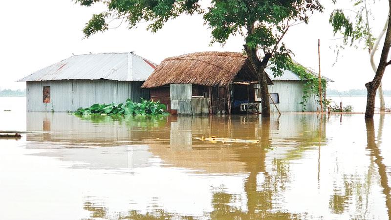 Teesta water flowing above danger level