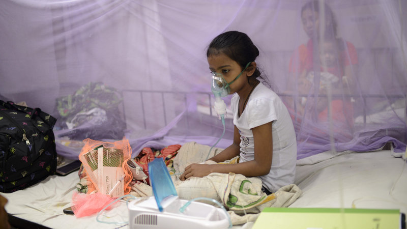 491 new dengue patients hospitalised in 24-hour