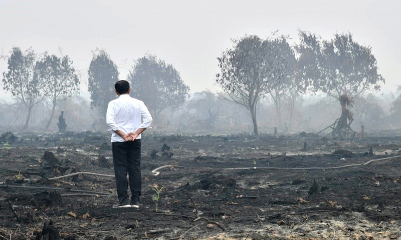 Haze from Indonesian fires now affecting Philippines
