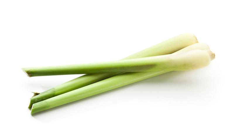 Lemon grass is chockfull of health benefits